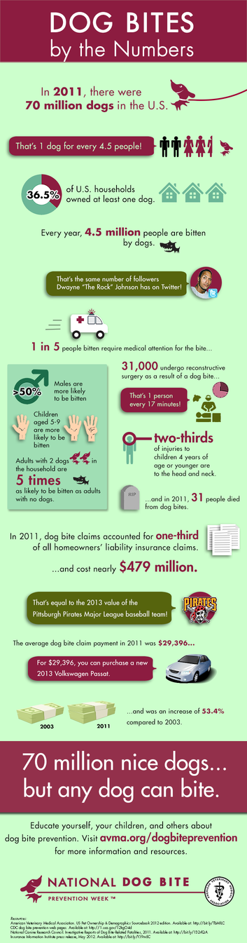 infographic on dog bites